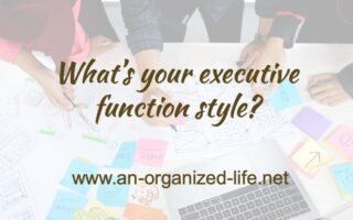 What's your executive function style?